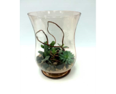 Succulent Vase in Belleville ON, Live, Love and Laugh Flowers, Antiques and Gifts