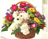 Puppy Love Basket in Columbia TN, Douglas White Florist