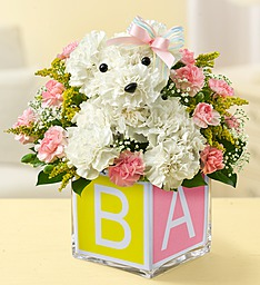 IT''S A DOGABLE GIRL in Port Charlotte FL, Punta Gorda Florist Inc.