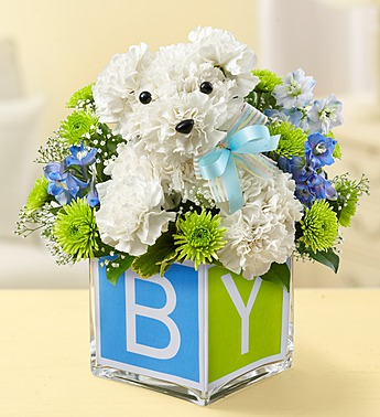 ITS A DOGABLE BOY in Port Charlotte FL, Punta Gorda Florist Inc.