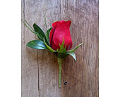 Single Rose Boutonniere in Muskegon MI, Wasserman's Flower Shop
