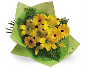 Yummy Yellow in Grand Falls/Sault NB, Grand Falls Florist LTD