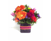 DBL-14 in Grand Falls/Sault NB, Grand Falls Florist LTD