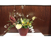 10 in Dallas TX, Petals & Stems Florist