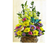Bird's Nest Basket in Largo FL, Rose Garden Florist