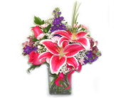 Stargazer Classic in Bend OR, All Occasion Flowers & Gifts