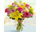 Sunshine and joy in Largo FL, Rose Garden Florist