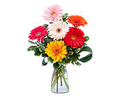 Colorful! in Methuen MA, Martins Flowers & Gifts