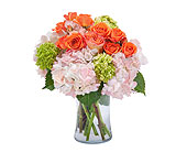 Beauty in Blossom in Bradenton FL, Florist of Lakewood Ranch