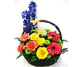 FF153 Bright and Beautiful Basket in Oklahoma City OK, Array of Flowers & Gifts