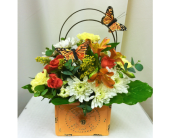 Butterfly Kisses in Hutchinson MN, Dundee Nursery and Floral