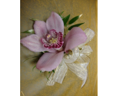 Pink Orchid  in Maple ON, Jennifer's Flowers & Gifts