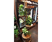 Rustic Wood Stand in Loudonville OH, Four Seasons Flowers & Gifts
