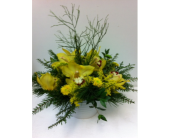 Cymbidium Orchids in West Vancouver BC, Flowers By Nan
