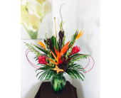 Tropical Delight in Melbourne FL, Paradise Beach Florist & Gifts