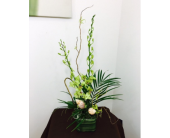 Modern cut orchids in Melbourne FL, Paradise Beach Florist & Gifts