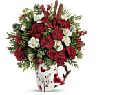 Send a Hug Christmas Cardinal by Teleflora in East Amherst NY, American Beauty Florists