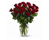 Two Dozen Red Roses in Walnut Creek CA, Countrywood Florist