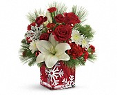 Teleflora's Snowflake Wonder Bouquet in Fredericton NB, Flowers for Canada