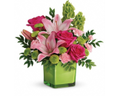 In Love With Lime in Smyrna GA, Floral Creations Florist