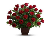 Red Rose Brown Container in Fairfax, Virginia, Rose Florist