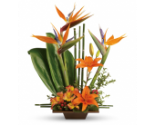 Exotic Garden in Largo FL, Rose Garden Florist