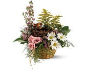 Teleflora's Nesting Basket in Amherst NY, The Trillium's Courtyard Florist