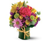 Teleflora's Posy Bunch in Tyler TX, Country Florist & Gifts