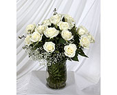 Vase White Roses in Southampton PA, Domenic Graziano Flowers