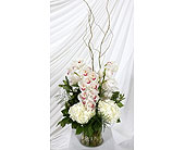 Vase of Cymbidium Orchids and Hydrangea in Southampton PA, Domenic Graziano Flowers