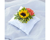Sunset Pillow Insert in Sapulpa OK, Neal & Jean's Flowers & Gifts, Inc.