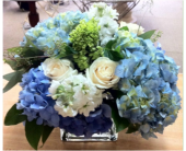 OCEAN BLUE in Needham MA, Needham Florist
