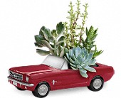 Dream Wheels '65 Ford Mustang by Teleflora in Highlands Ranch CO, TD Florist Designs