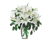 Perfect White Lilies in Greenwich CT, Greenwich Florist