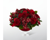 The FTD� Holiday Peace� Bouquet by Vera Wang in Kingsport, Tennessee, Holston Florist Shop Inc.