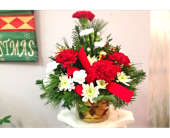 Filer's Golden Glow Christmas in Cleveland OH, Filer's Florist Greater Cleveland Flower Co.