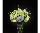 Superior Sights� Luxury Bouquet in Hillsboro OR, Marilyn's Flowers