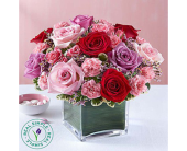 Forever Your Rose Medley in Aston PA, Wise Originals Florists & Gifts