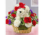 Love Pup in Mount Morris MI, June's Floral Company & Fruit Bouquets