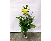 Single YELLOW in Belleville ON, Live, Love and Laugh Flowers, Antiques and Gifts