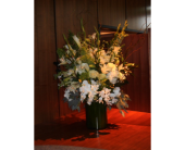 Custom in Dallas TX, Petals & Stems Florist