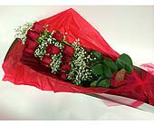 One Dozen Boxed Red Roses in Maple ON, Jennifer's Flowers & Gifts