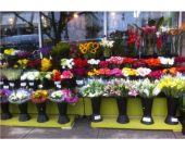 Store Front 3 in Vancouver BC, Downtown Florist