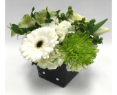 Green & White Delight in Belleville ON, Live, Love and Laugh Flowers, Antiques and Gifts