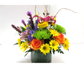 Bright and Beautiful in Worcester MA, Holmes Shusas Florists, Inc