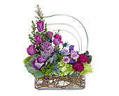 Magenta Magic in Bradenton FL, Florist of Lakewood Ranch