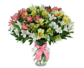 Always Alstroemeria in Markham ON, Freshland Flowers