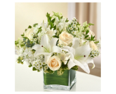 Pure Grace in Markham ON, Freshland Flowers
