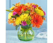 Sunshine Special in Amherstburg ON, Flowers By Anna