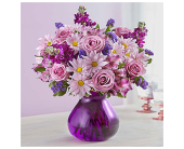 Plum Crazy 2 in Aston PA, Wise Originals Florists & Gifts